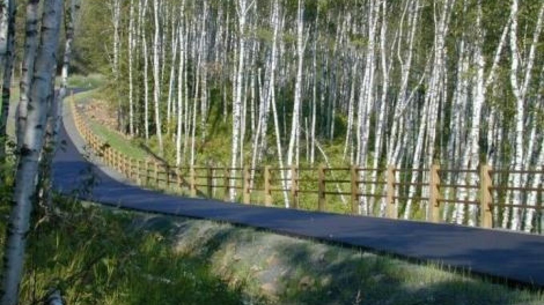 Gitchi-Gami State Trail