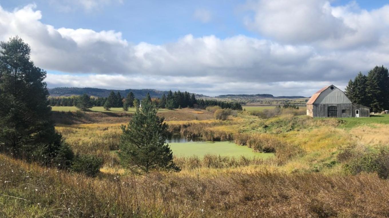 Highway 61 overlooking pastoral barn – Courtney Lanthier