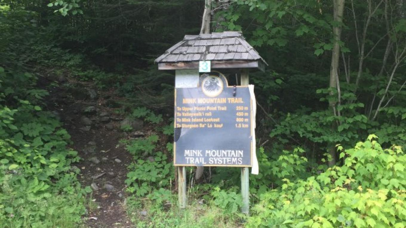 Mink Mountain Trail Marker – Courtney Lanthier