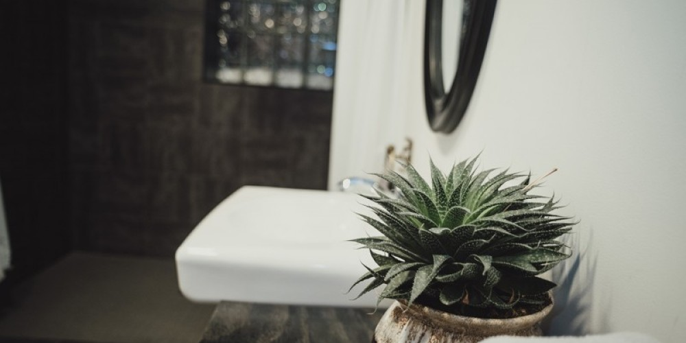 Barrier Free Bathroom – Laura Paxton