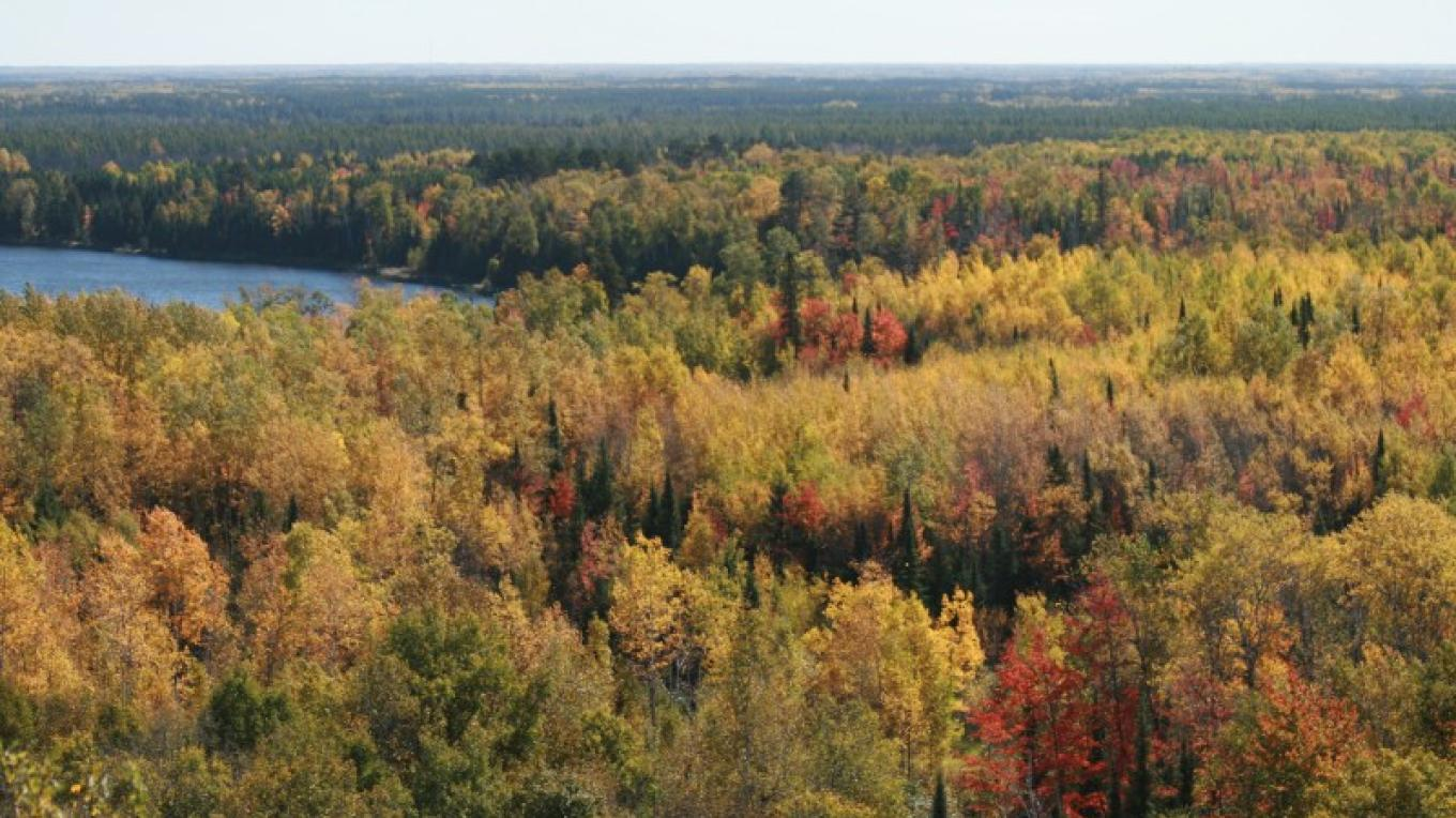 South Overlook – MN DNR