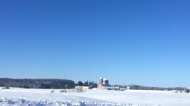 winter farm fields – Courtney Lanthier