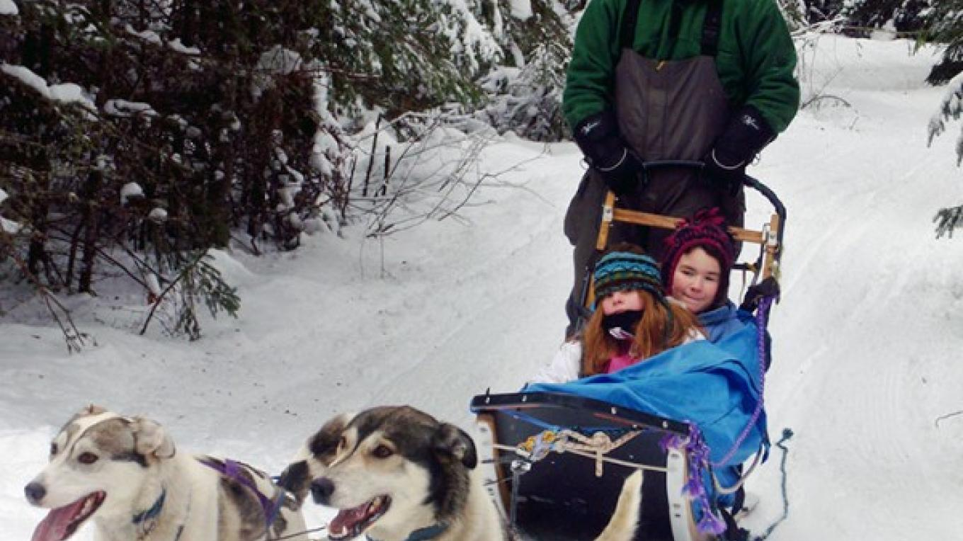 Jump aboard and dog sled through the snowy woods. – Wolf Ridge Environmental Learning Center