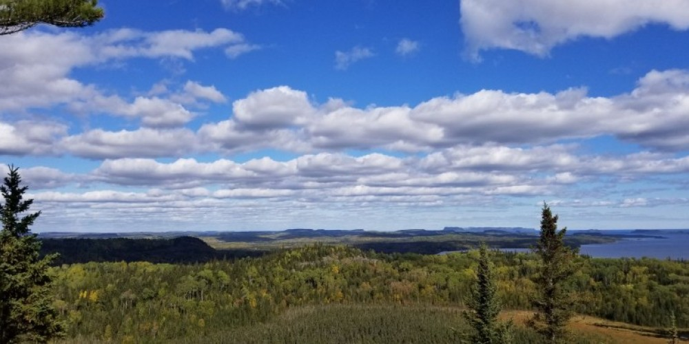 view of Big Trout Bay atop James Duncan Nature Trail – Josh Oleksuk