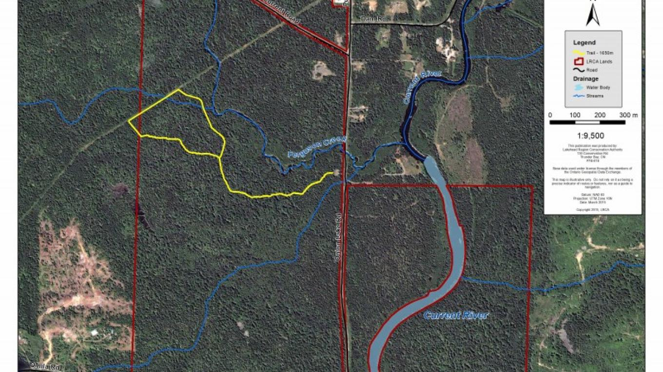 Wishart Forest Trail Map – LRCA Staff