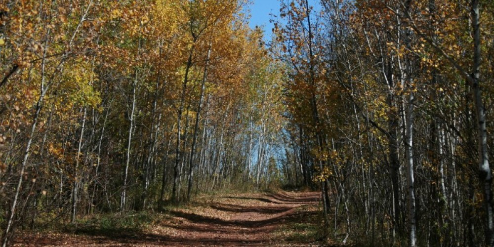 Road to Herc – MN DNR