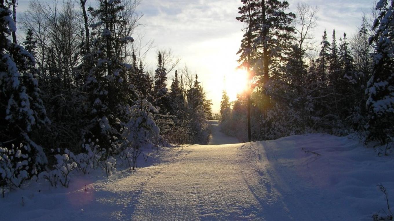 Who can resist? – Rainy Lake Nordic Ski Club