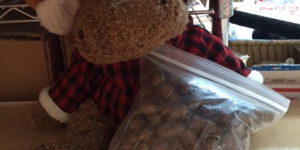 Mr. Moose likes getting his picture taken. Many people who buy him also take pictures with him. We post them all on our Facebook page. Here he has moose poop a customer brought us from the Boundary Waters – Lori Zembal