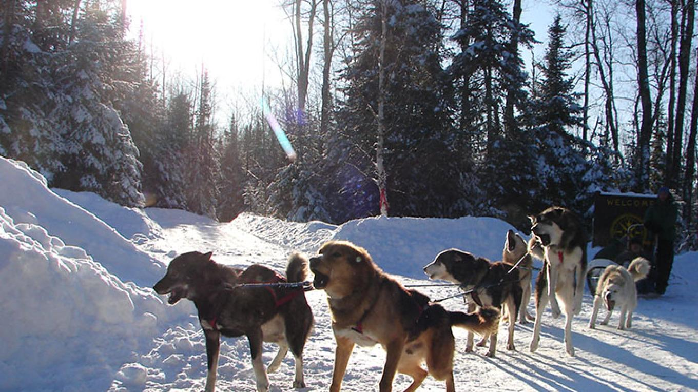 Experience the magic of the northwoods. – Wolf Ridge Environmental Learning Center