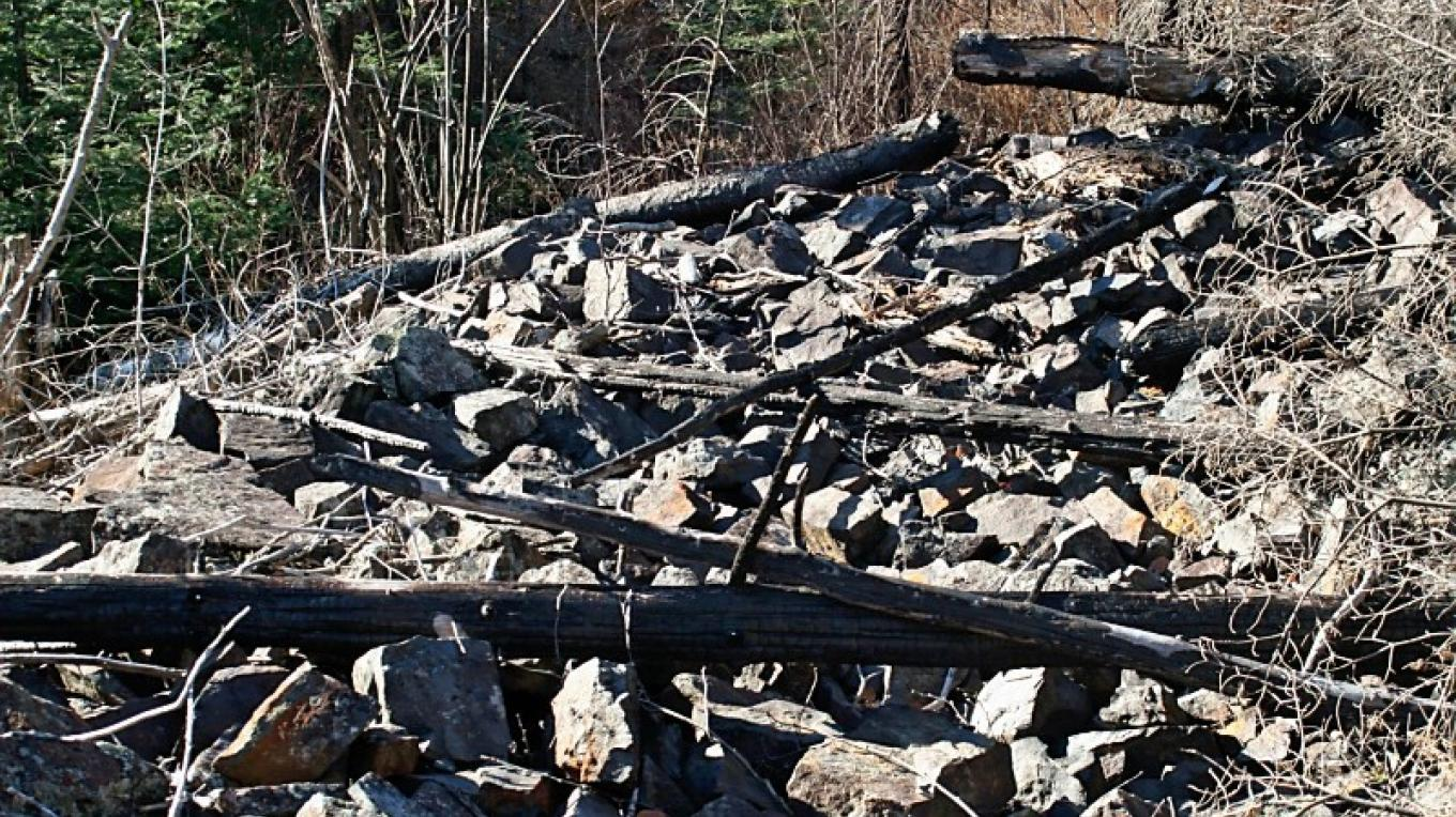Pilings on the Centennial Trail – susan prom