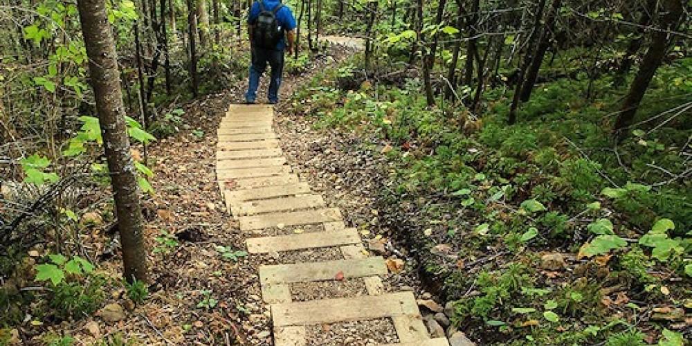 Steps to Middle Falls – Travis Novitsky