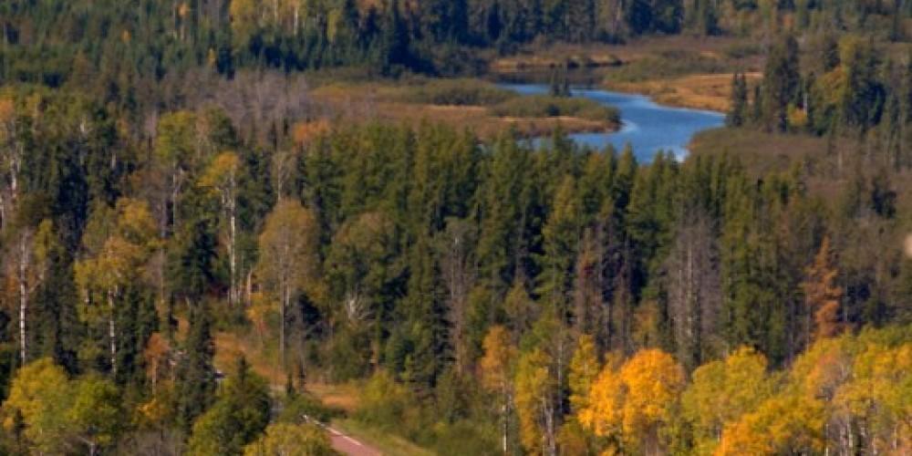 Gunflint Trail National Scenic Byway – Paul Stafford, Explore Minnesota