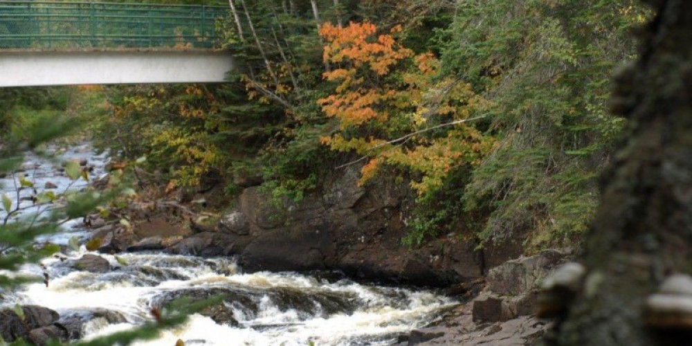 Foot Bridge over the Brule River – Peggy McMahon
