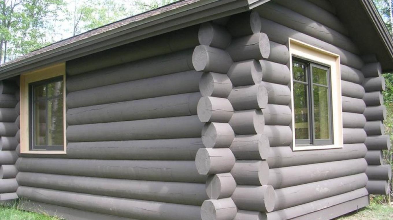 Camper Cabin – MN DNR