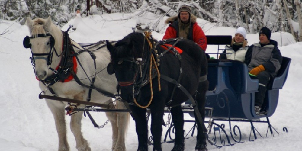 Sleigh at Positive Energy Outdoors, Duluth, MN – Positive Energy Outdoors