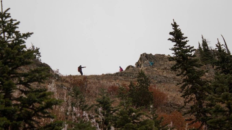 Traversing Peters Ridge – Sheena Pate