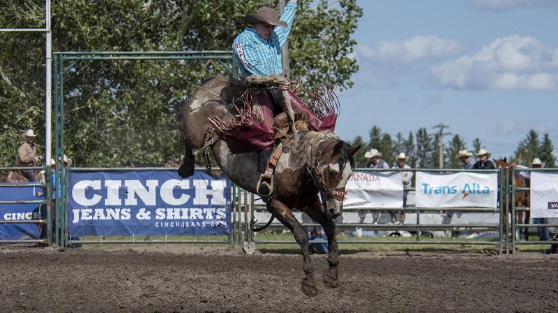 Saddle Bronc - 2019 – Trevor Page