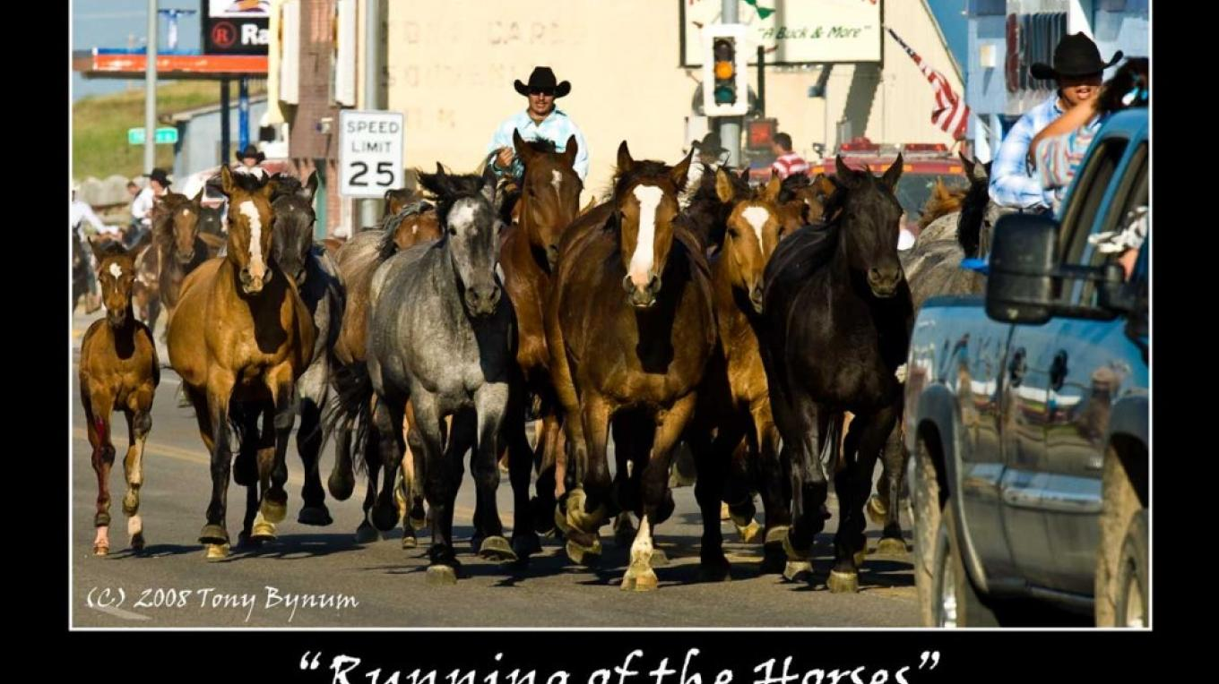 Horses being trailed thought Browning, MT on their way to the rodeo grounds for the NAID Rodeo – tonybynum.com