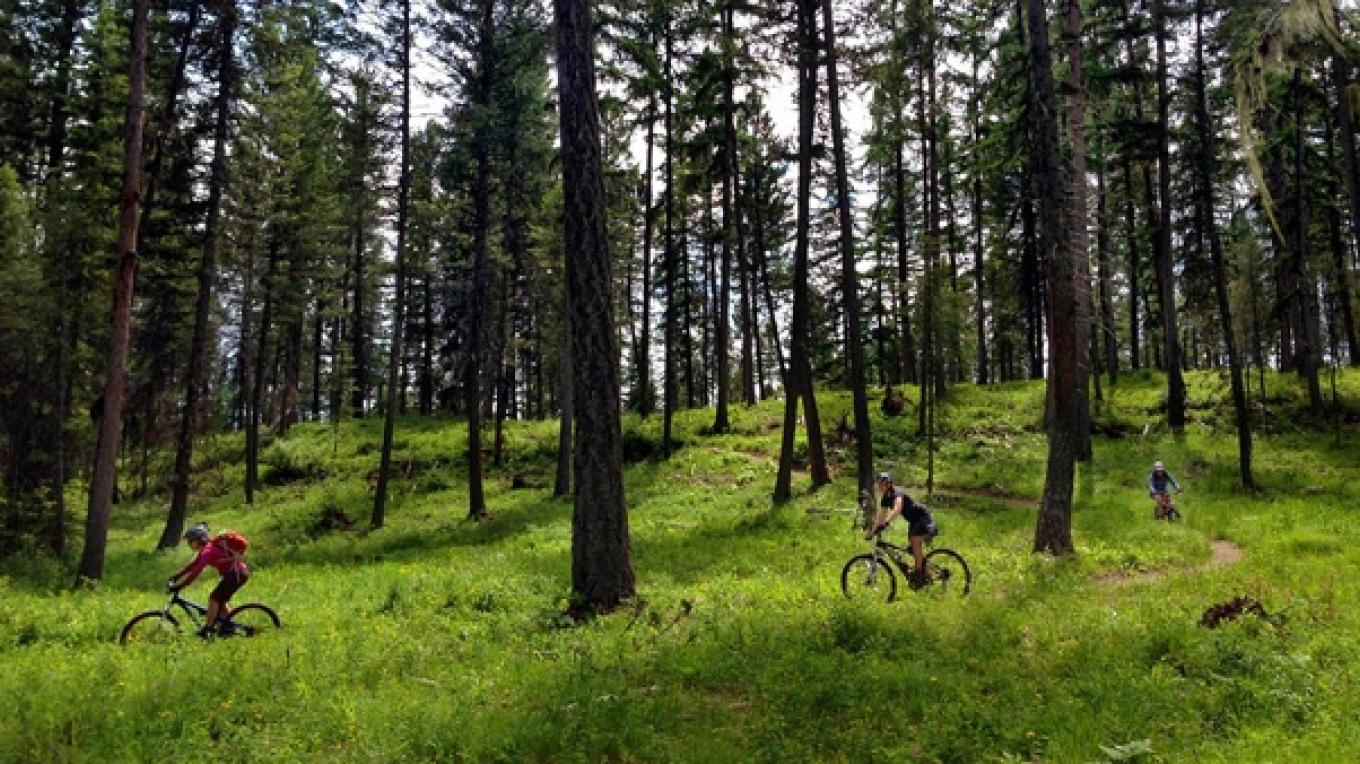 Right out of the Whitefish Bike Retreat's back door are 25 miles of trail for biking and hiking!