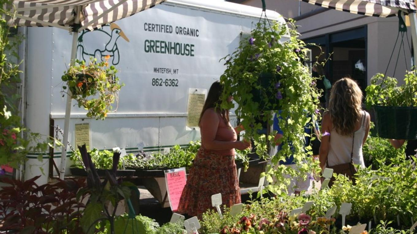 Locally grown organic produce at the Whitefish Farmer\'s Market. – John Frandsen