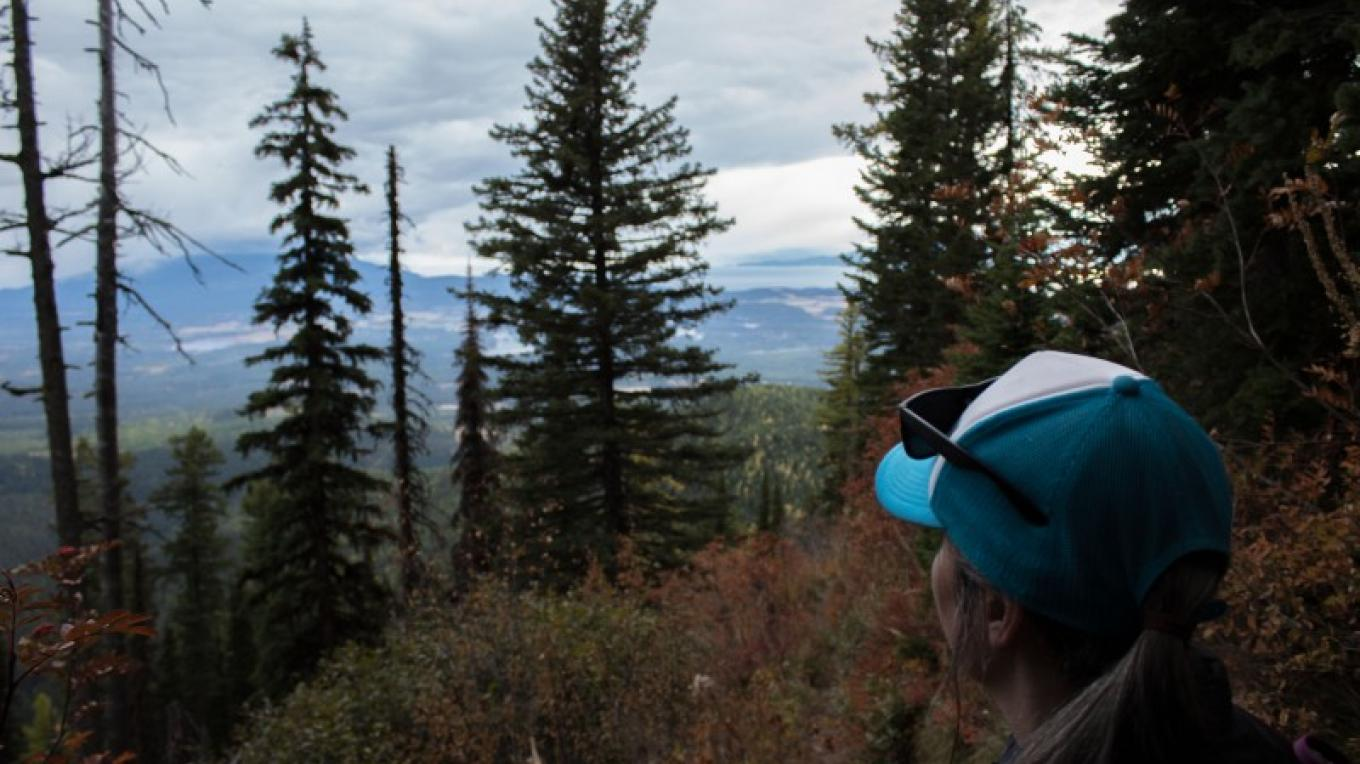 Looking towards south towards Flathead Lake from Peters Ridge Trail #37. – Sheena Pate