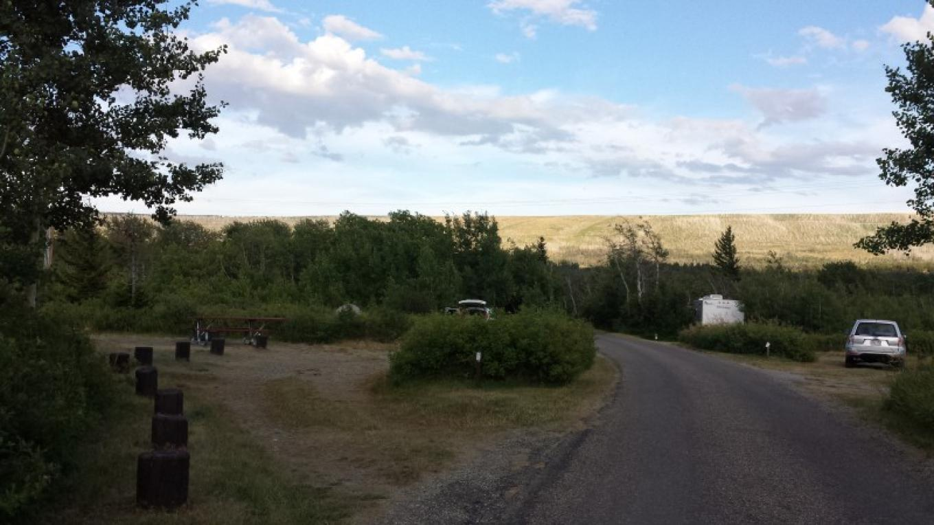 St. Mary Campground offers shade under aspen groves. – Sheena Pate