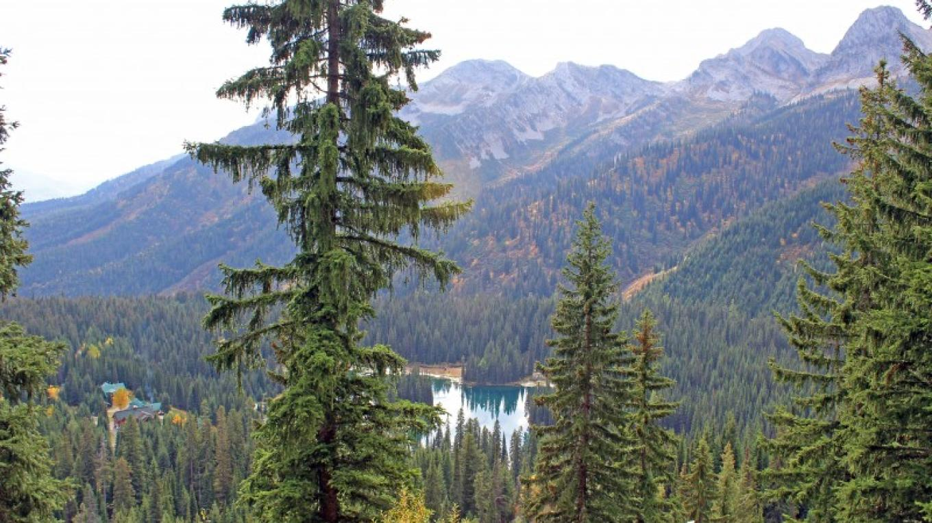 A view of the lodge from a sub-alpine trail. – Sheena Pate