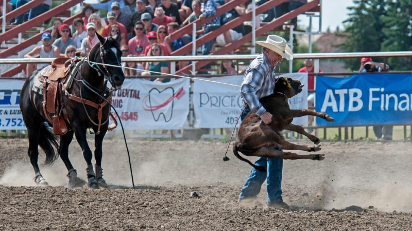 Calf Roping. – Trevor Page