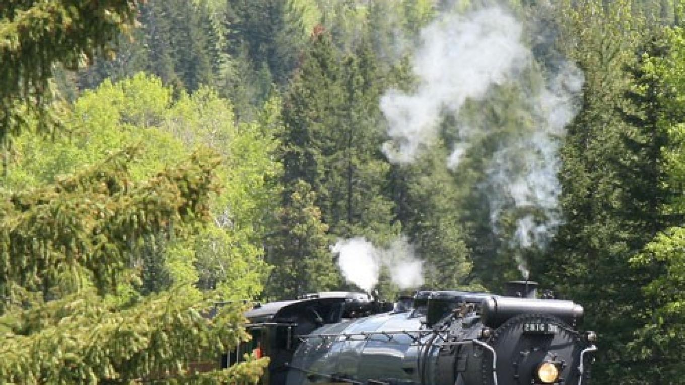 C.P.R. 2816 navigates through forest just west of Continental Divide – d