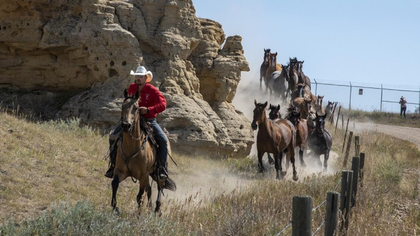 Running the rodeo horses through the hoodoos - 2019 – Trevor Page