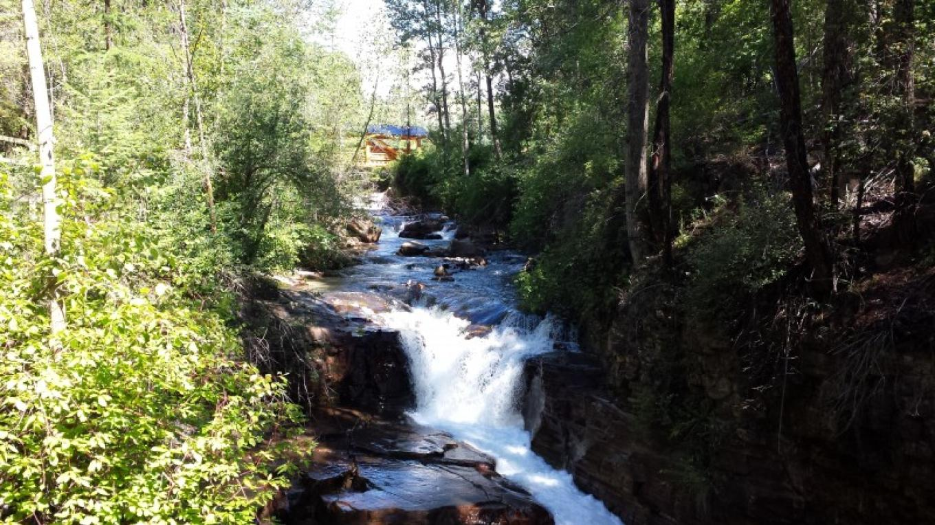 Mark Creek before Marysville Falls – Sheena Pate