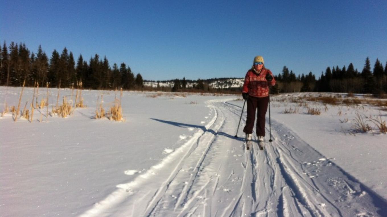 Beauvais Lake Provincial Park Nordic Trails