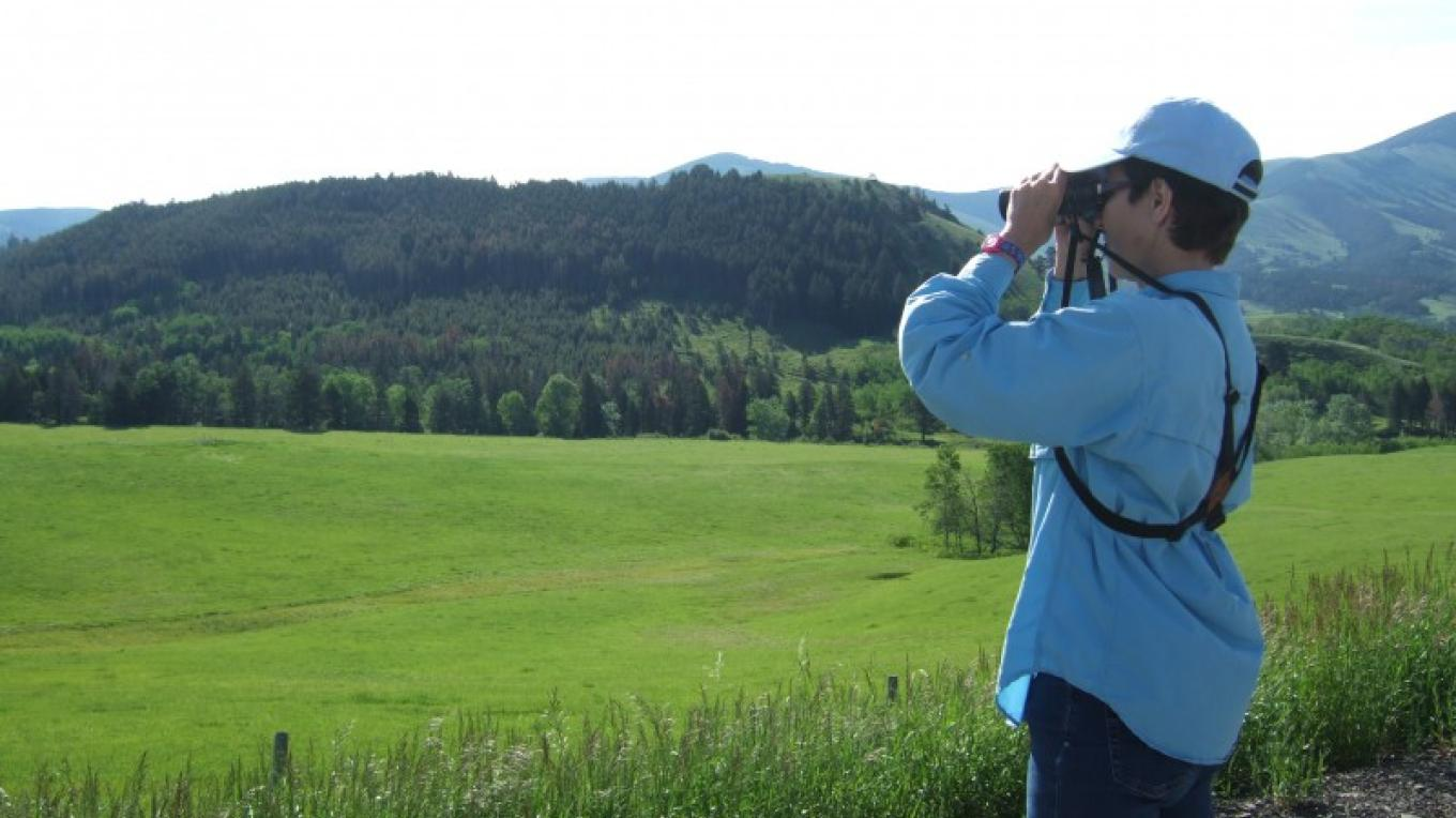 Birding near Highwood Mountains. – Gayle Fisher