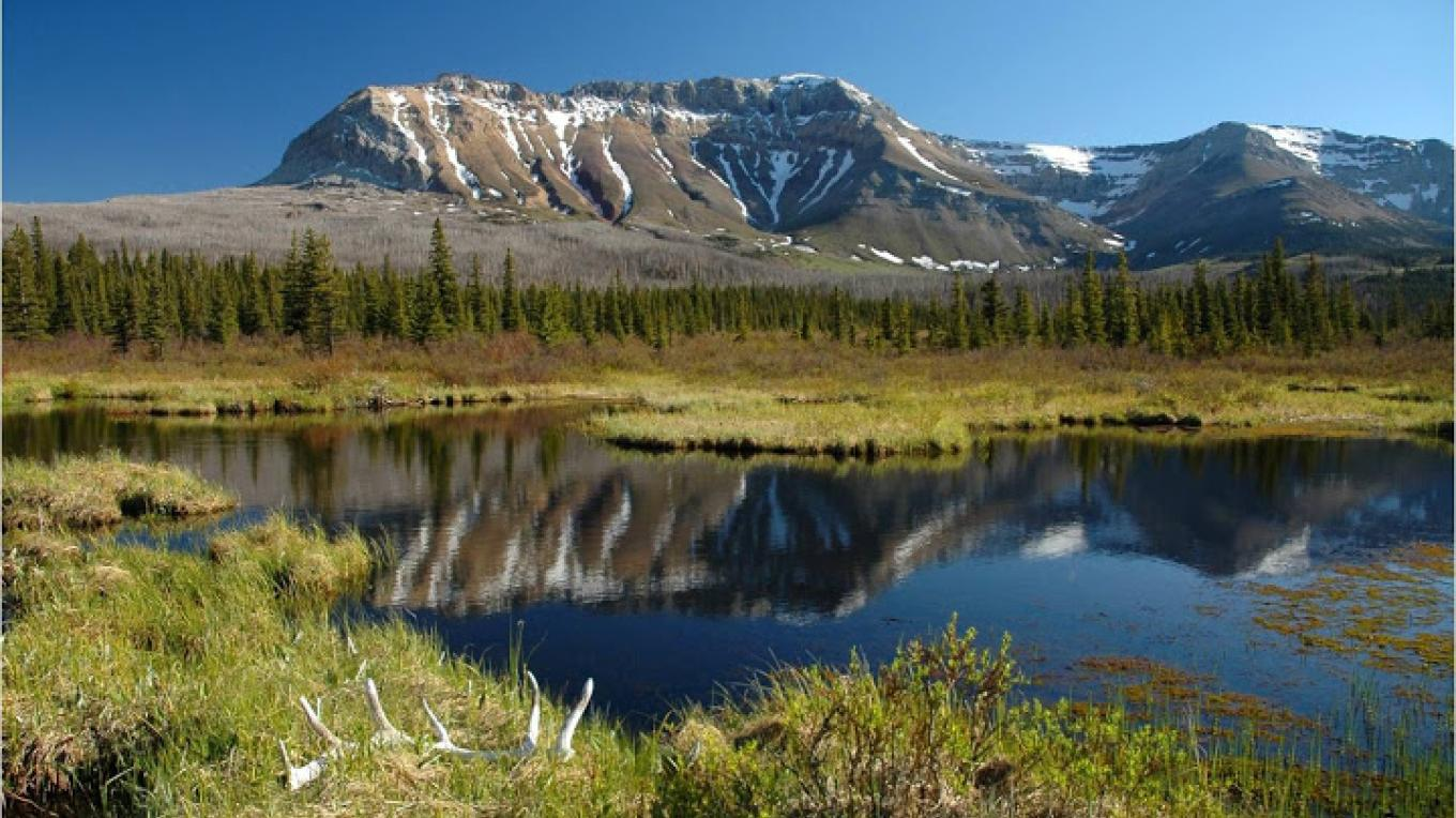 Waterton Natural Area- AB – Nature Conservancy of Canada
