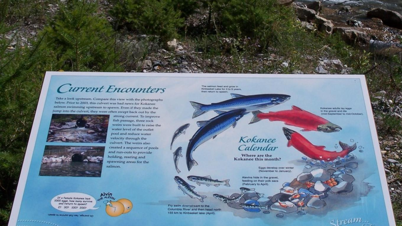Interpretive panels along the creek describe the site's ecological treasures – Nick Berzins