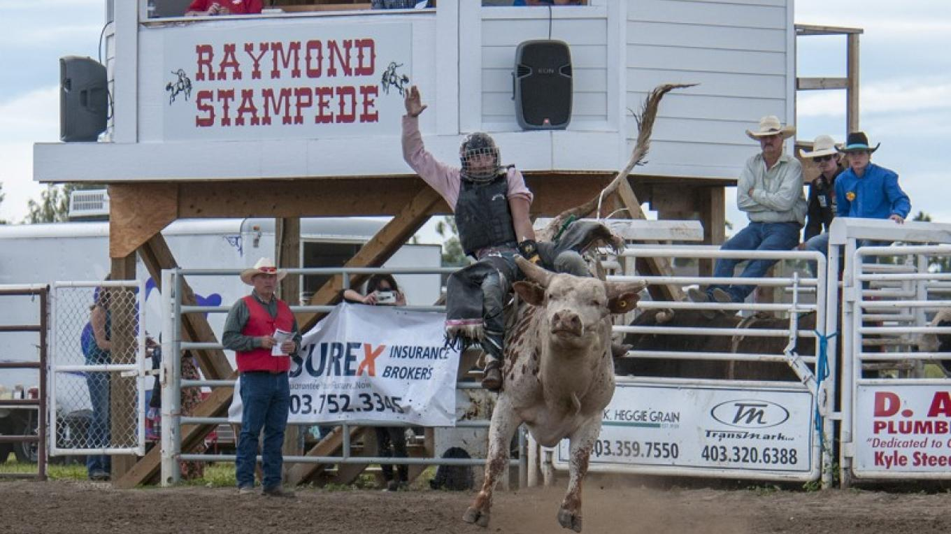 Bull riding. – Trevor Page