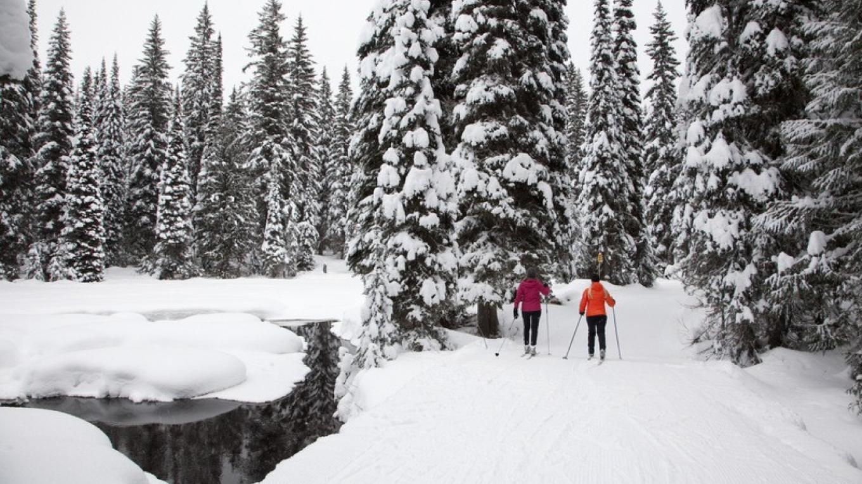 Fernie Nordic Trails – Courtesy Tourism Fernie
