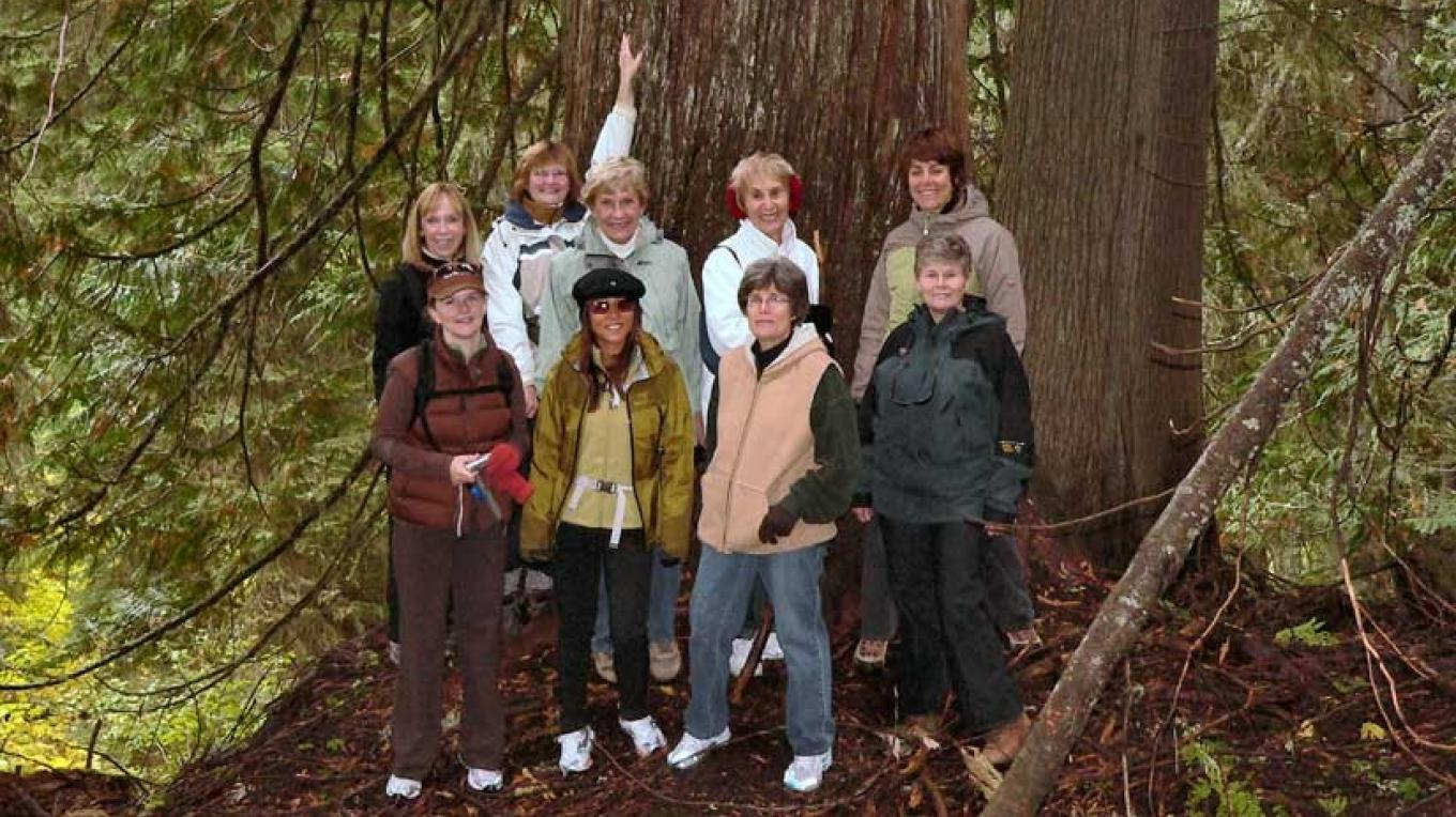 Fun and educational hikes through old growth cedar forests. – Lee-Anne Walker