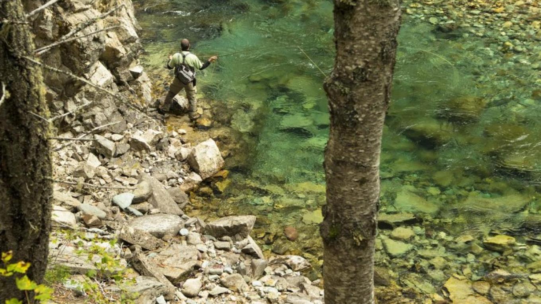 Elk River Fly Fishing – Mike McPhee