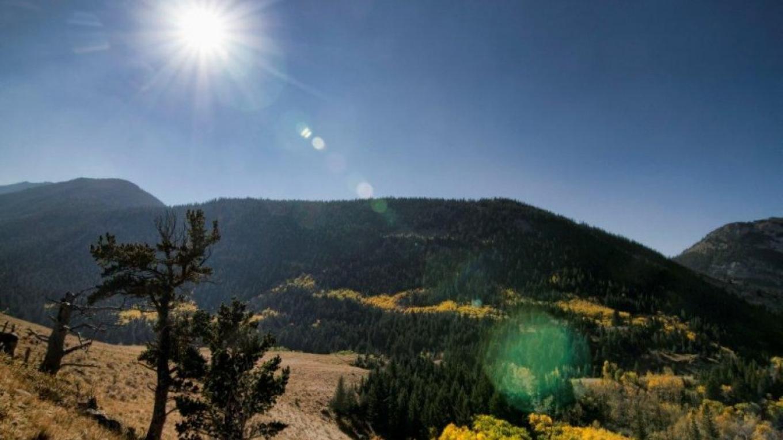Bob Creek montane – J Novotny