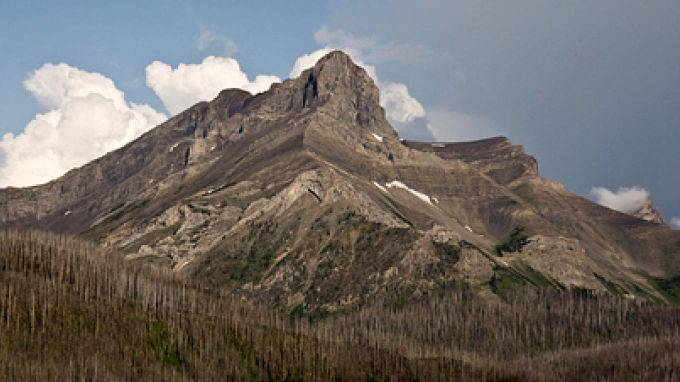 Mount Coulthard anchors the Flathead Range along Sartoris Road – David Thomas