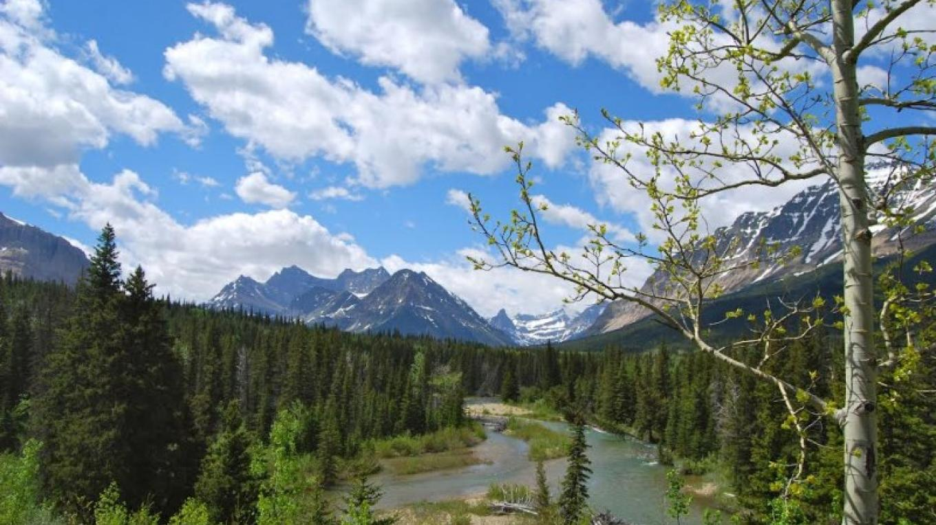 Belly River Campground offers excellent fishing access. – Glacier Guides