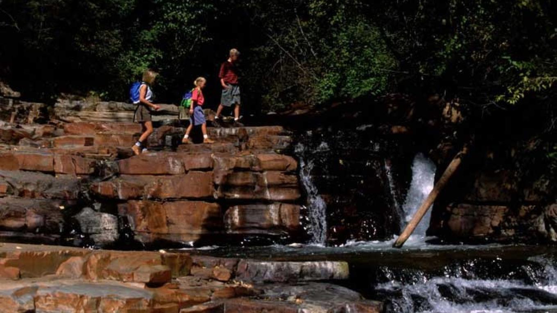 From main street Marysville, a boardwalk leads along Mark Creek to the Marysville Falls. – Don Weixl