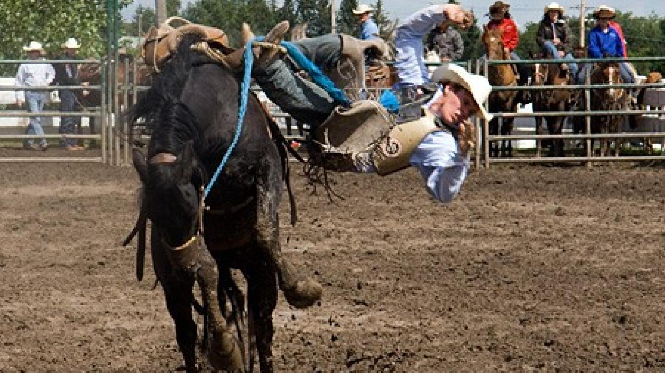 """Wild broncs"" are in fact chivalrous competitors who carefully side-step fallen riders. – David Thomas"