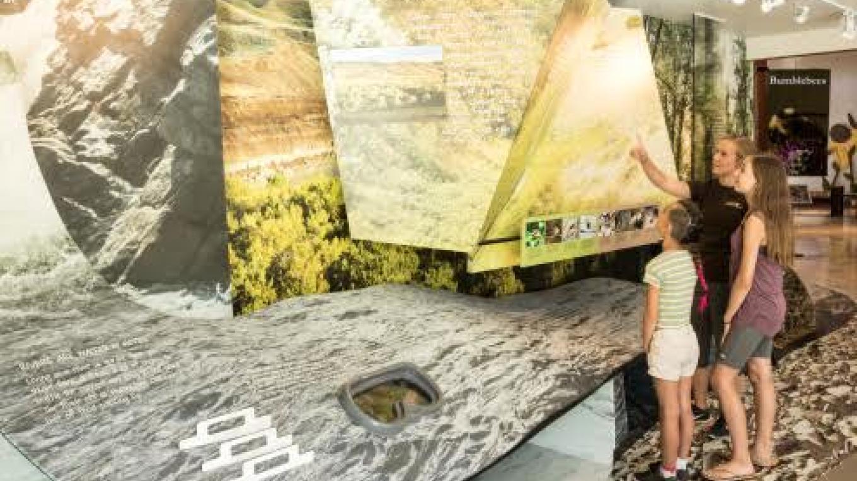 River Valley Exhibit – Courtesy Helen Schuler Nature Centre