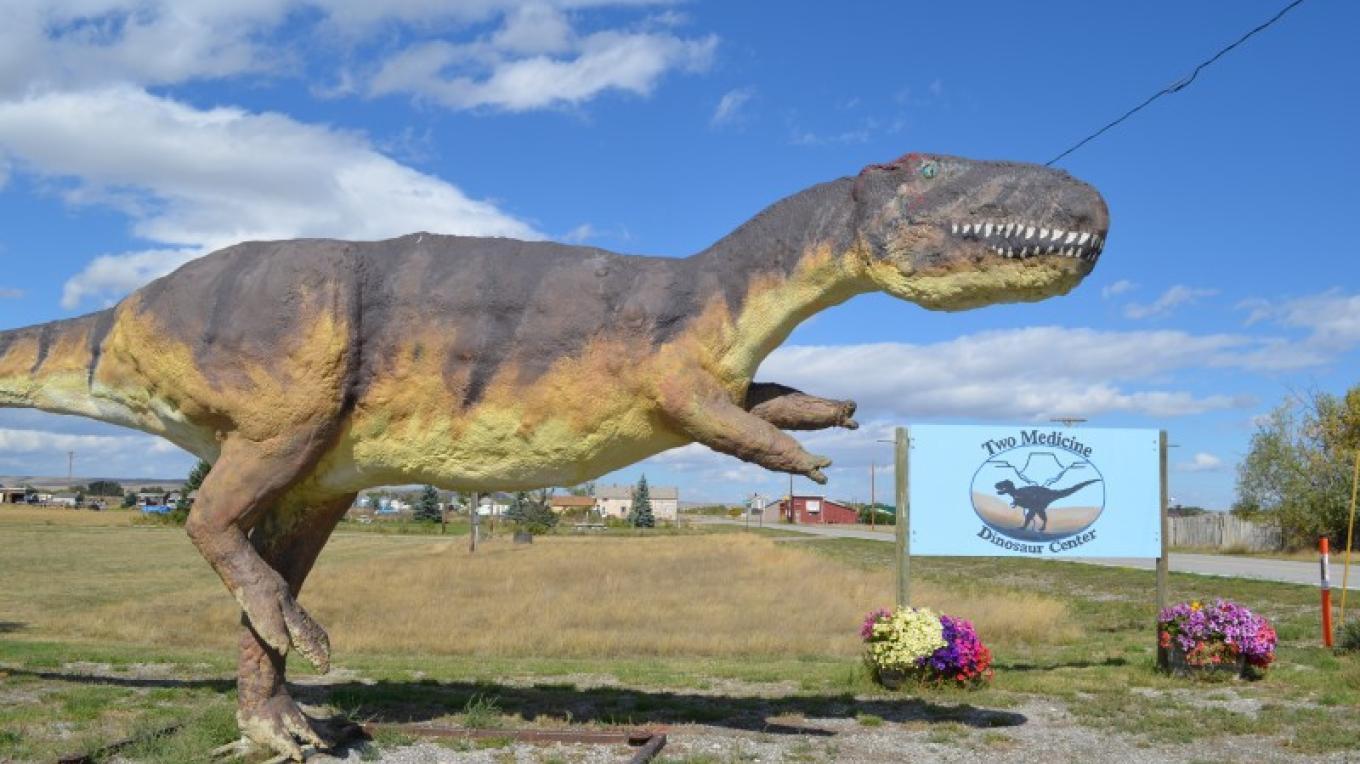 The Montana Dinosaur Center- Stacia Martineau