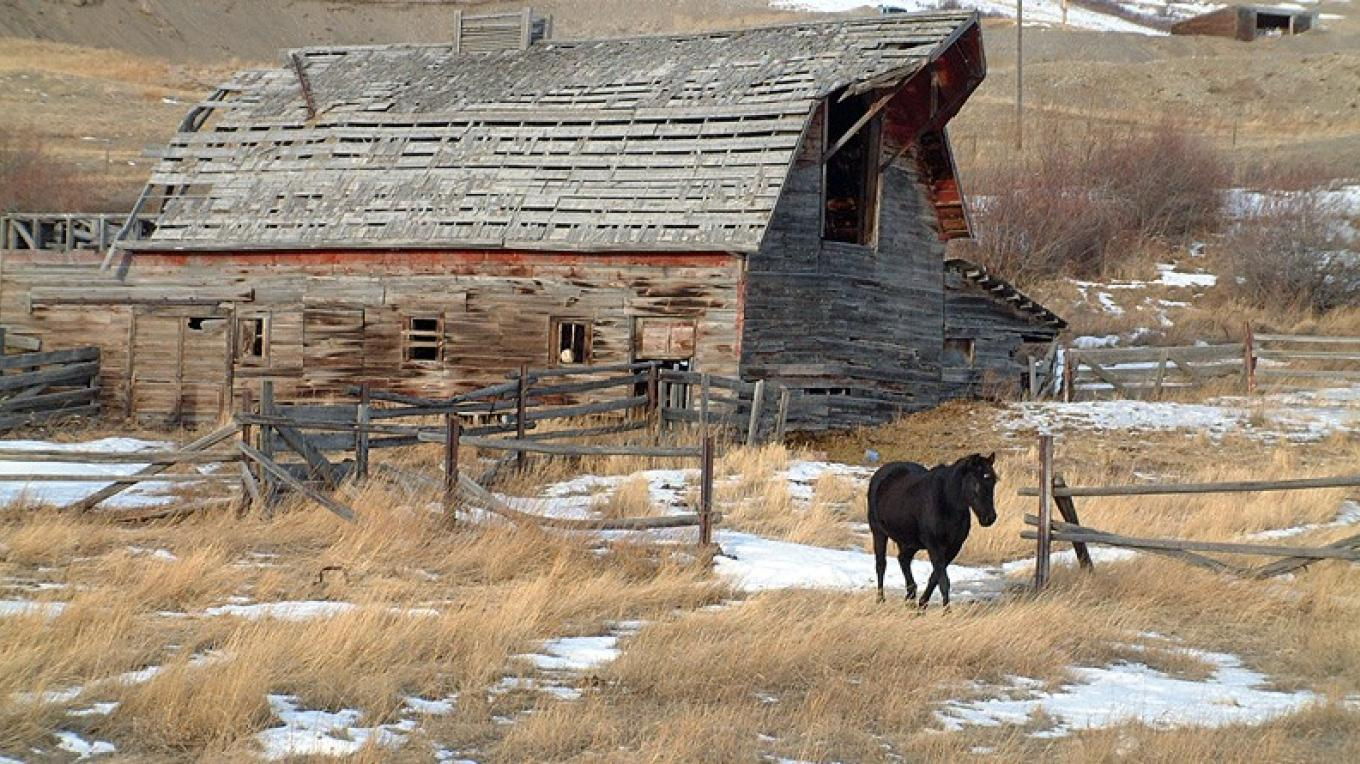 Horse and barn near Lundbreck, along The Cowboy Trail. – David Thomas