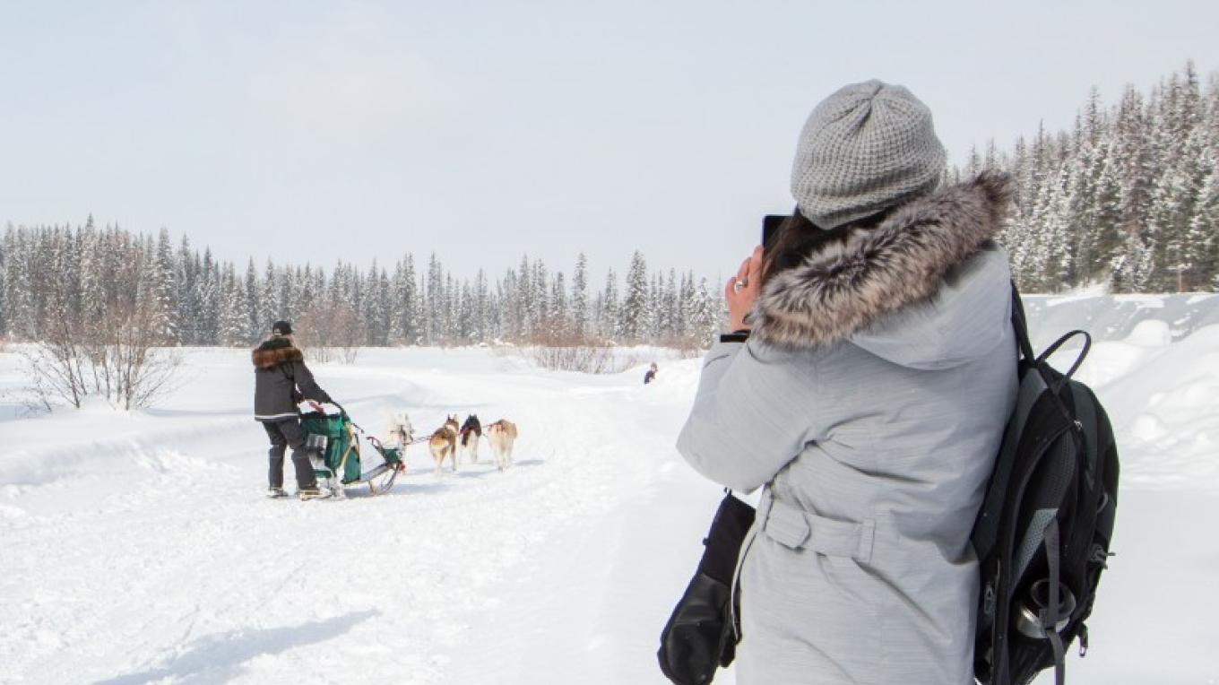Flathead Classic Sled Dog Race – Sheena Pate