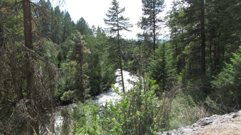 Swan River views from Bigfork Nature Trails. – Sheena Pate
