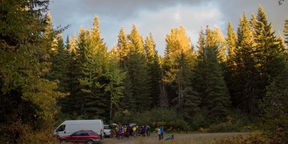Peters Ridge Trail #37 Trailhead Parking Area – Sheena Pate